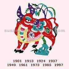year of the ox 1997 30 best ox images on zodiac signs ox and