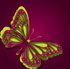 butterfly paper border designs free vector 11 531 free