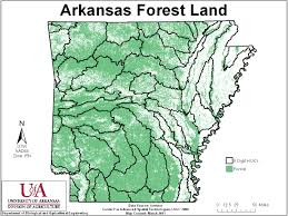 Arkansas forest images Types of water pollution jpg