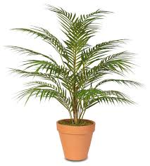 real touch artificial areca palm plant in a small black clay pot