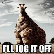 Giraffe Meme - giraffe meme