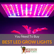 Best Led Grow Lights Best Led Grow Lights High Times You Need To Buy Nov 2017