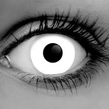 halloween contact lenses contact lenses for beauty and halloween