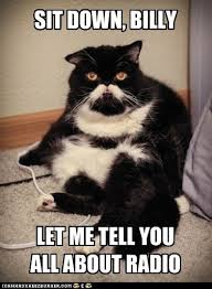 Make Your Own Cat Meme - when you wish you could make your own phone ring lolcats lol