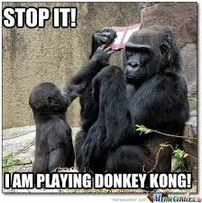 Funny Gorilla Meme - 35 most funniest donkey meme pictures and photos