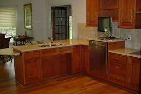Elevated Dishwasher Cabinet Making Your Home Senior Friendly Naipc