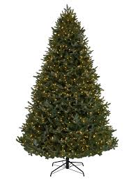 bh fraser fir on sale after for the home