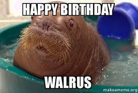 Walrus Meme - happy birthday walrus make a meme