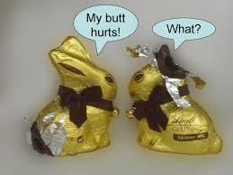 Chocolate Bunny Meme - chocolate bunnies after easter www onestopchoc com dove chocolate