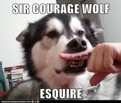 Meme Courage Wolf - sir courage wolf i has a hotdog dog pictures funny pictures of