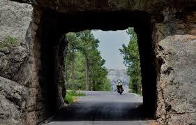 South Dakota travel visa images 10 reasons to visit custer state park in south dakota dang travelers jpg