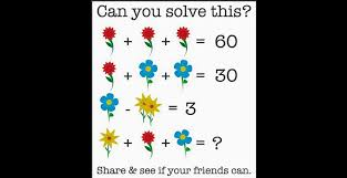 Hold My Flower Meme - here is the answer to the flower math problem that is driving