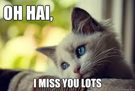 I Miss U Meme - i miss you meme google search i miss you memes pinterest