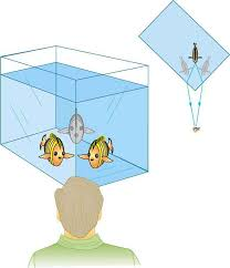 Light Is Not Refracted When It Is The Law Of Refraction Physics