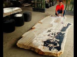 petrified wood dining table petrified wood dining room table youtube
