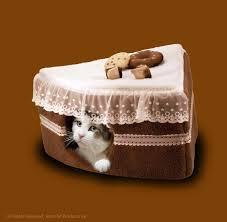 kitty cake cat bed cake bed with pad chocolate 18 u2033 u2013 best pet