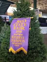 kaleidoscope farms kaleidoscope farms christmas tree named 2016