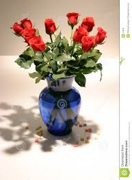 Long Stem Rose Vase 12 Long Stem Red Roses In Vase Royalty Free Stock Photo Image 57825