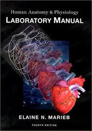 Pearson Anatomy And Physiology Lab Manual New Human Anatomy U0026 Physiology Laboratory Manual Cat Version