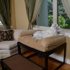 Bedroom Bed In Front Of Window Dogs And Cats Looking Out The Window The Savvy Pet