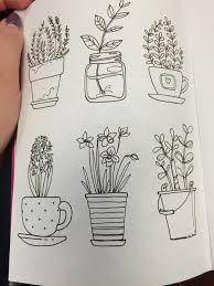25 beautiful plant drawing ideas on pinterest plant sketches