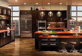 transitional kitchen ideas amusing transitional kitchen designs pictures ideas house design