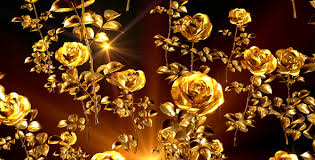 golden roses golden roses by as 100 videohive