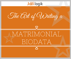 Matrimonial Resume Sample by Bride Groom Resume