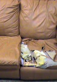 Recovering Leather Sofa Leather Repair Restoration On Site Repair Universal Upholstering