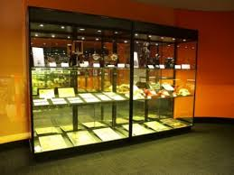 Wall Mounted Glass Display Cabinet Singapore Museum Display Cabinets Australian Made Buy Online Showfront
