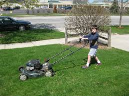 how to prepare your lawn for the new year lawnstarter