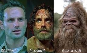 Dead Memes - the best walking dead memes from season 5 part 5 others