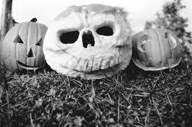 bellingham hosts halloween activities galore whatcomtalk