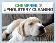 upholstery cleaning upholstery cleaners minneapolis mn