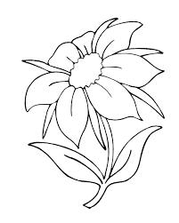 printable of flowers free download