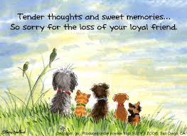 pet condolences words of grief for dog sympathy cards for pets dog cocker