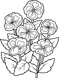flowers coloring pages pics flower coloring pages of