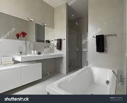 Modern Bathroom Showers by Bathtubs Appealing Stock Tank Bathtub Drain 69 Bathroom Bathtub