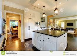 grande cuisine moderne grande cuisine moderne idee cuisine americaine appartement 9