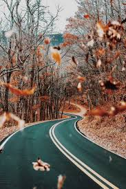 Fall Autumn by 1517 Best Fall Scenes Images On Pinterest Autumn Fall Autumn