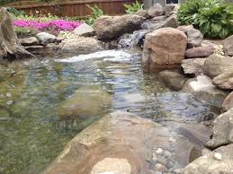backyard fish pond installation c e pontz sons landscape