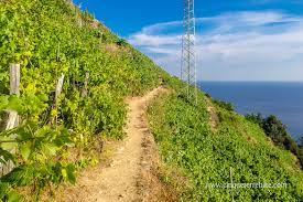 Cinque Terre Italy Map Popular Long Distance Trails Details With The Map
