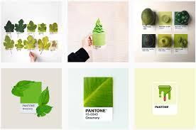 top design trends pure creative