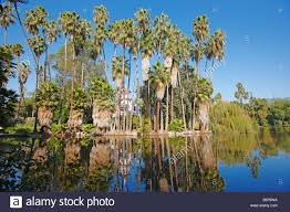 Cottage Los Angeles by Queen Anne Cottage Among The Palm Trees Los Angeles County