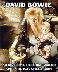 David Bowie Labyrinth Meme - david bowie is awesome david bowie bowie and humor