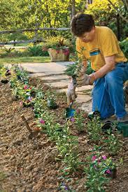 southern gardening charleston u0027s 5 iconic plants southern living