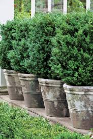 planters astounding extra large planters cheap large planters on