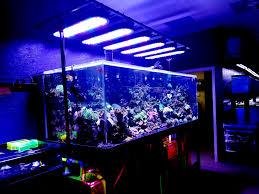 sb reef lights review sb reef lights 7841 pine forest rd pensacola fl 32526 yp com