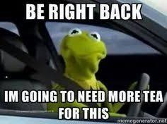 Kermit Meme Images - kermit meme iskanje google laughter and cuteness therapy