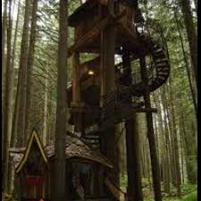 Cool Tree Houses 33 Best Cool Treehouses Images On Pinterest Architecture